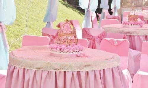 festa das princesas marrom e rosa
