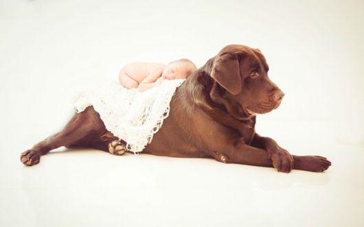 book de recém nascido com cachorro
