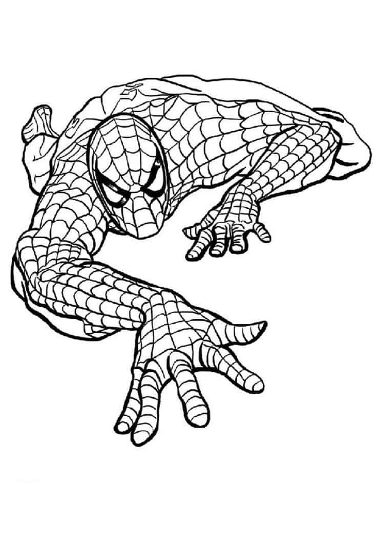 homem aranha branco e preto