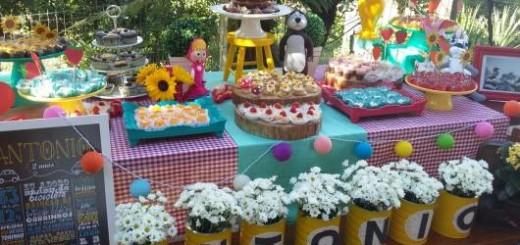 festa jardim