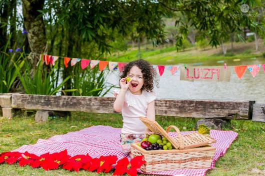 ensaio picnic