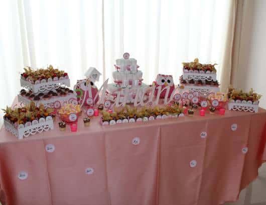 festa rosa corujas