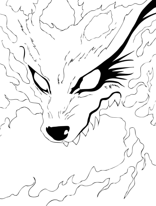 rosto raposa