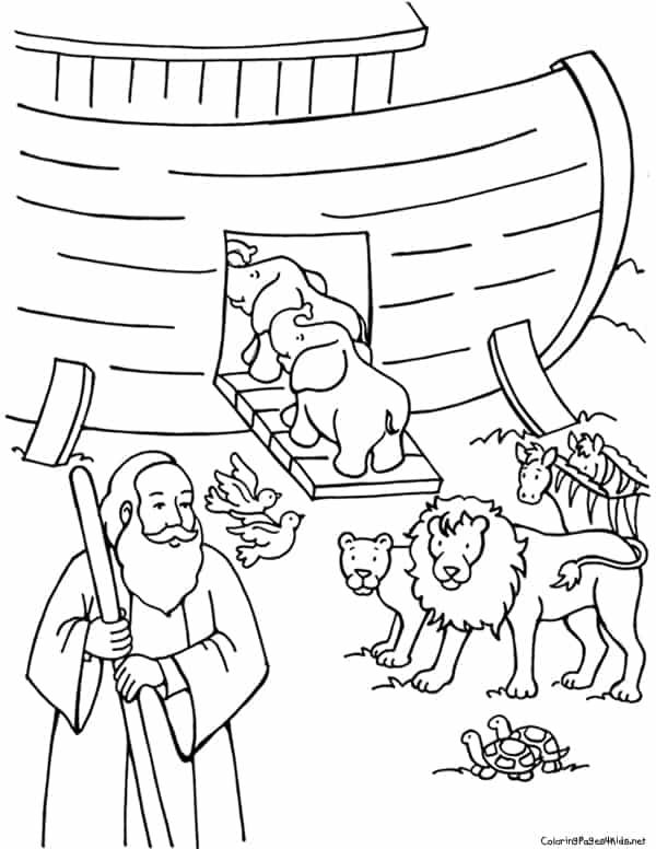arca de Noé para pintar