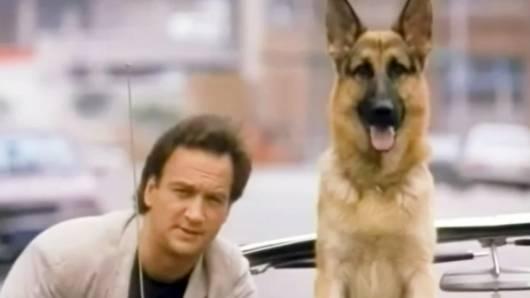 Cena do filme K9, um policial bom para cachorro. Excelente filmes de cachorro.