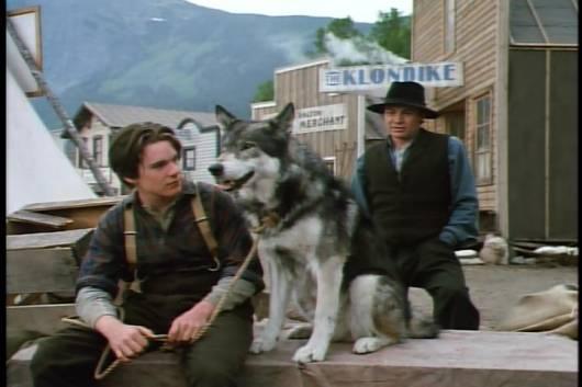 Cena do filme Caninos Brancos.