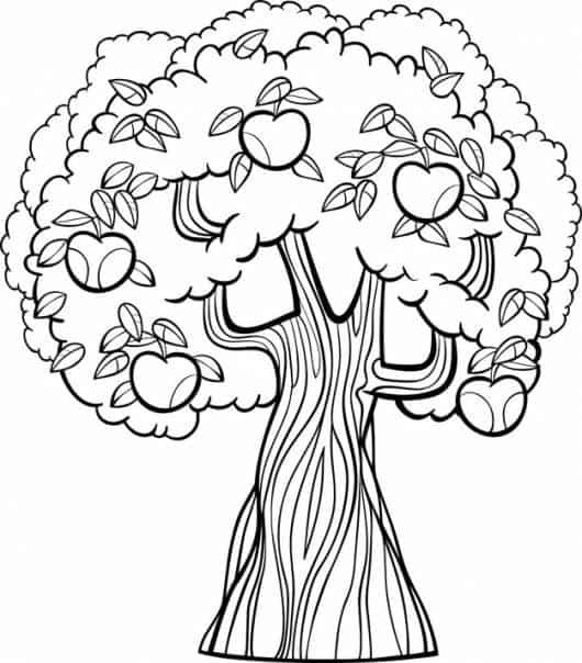 desenhos de frutas para colorir árvore de maça