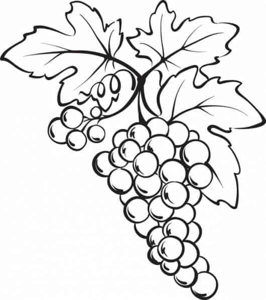 desenhos de frutas para colorir dicas e ideias