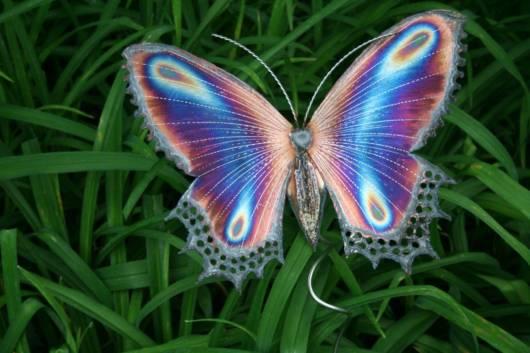 borboleta com asas coloridas