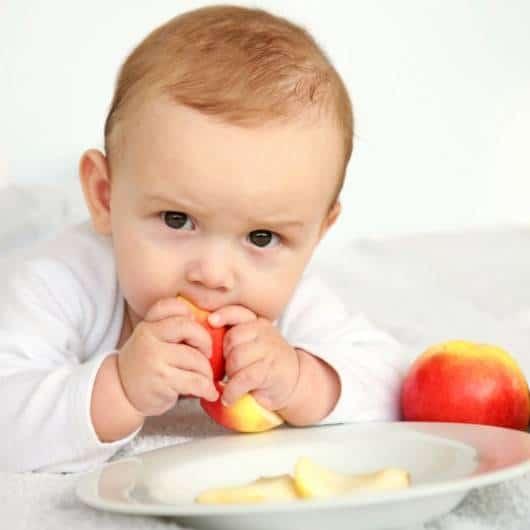 cardápio para bebê de 6 meses