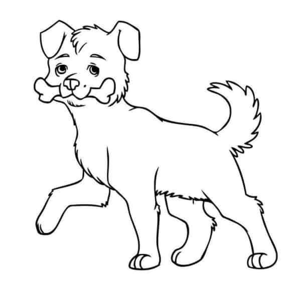 Cachorrinho com osso na boca para colorir