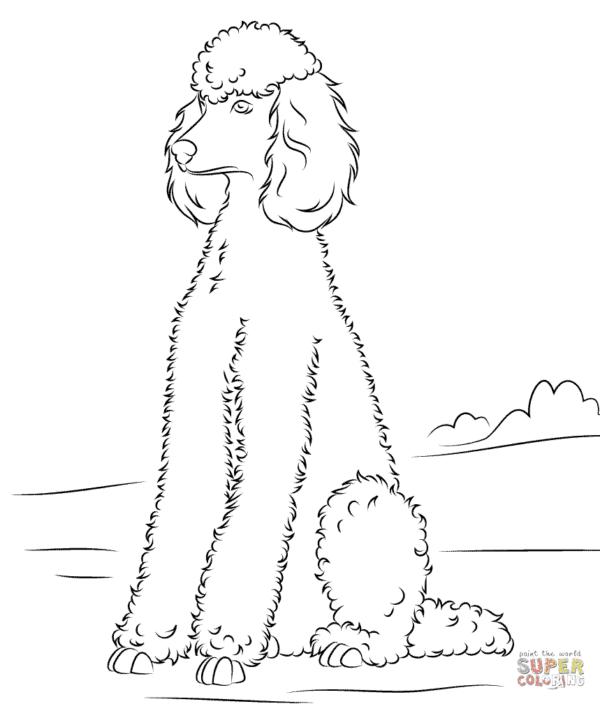 Cachorro bem grande para colorir