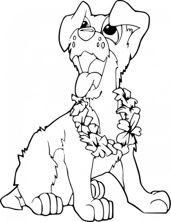 Cachorro com colar de flores para colorir