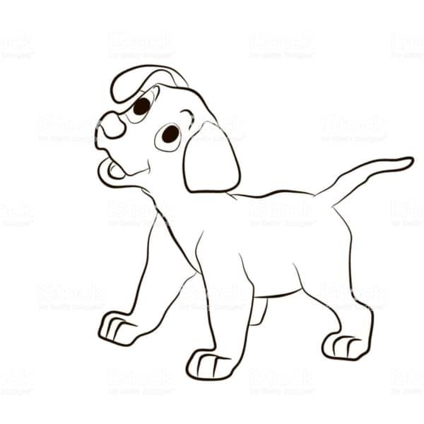 Cachorro filhote para colorir