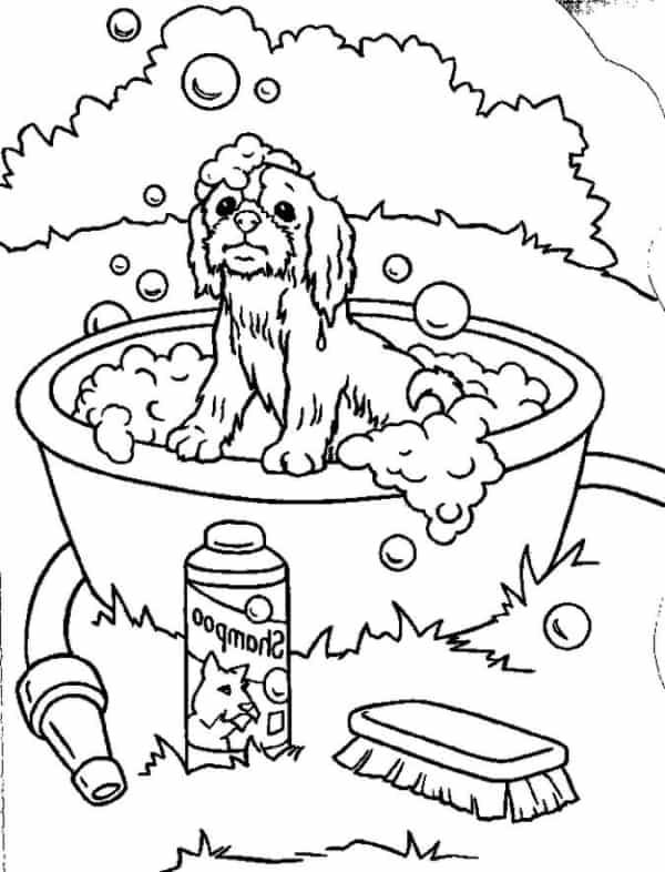 Cachorro tomando banho para colorir