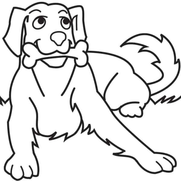 Cachorro Para Colorir 60 Desenhos Adoraveis Para Imprimir