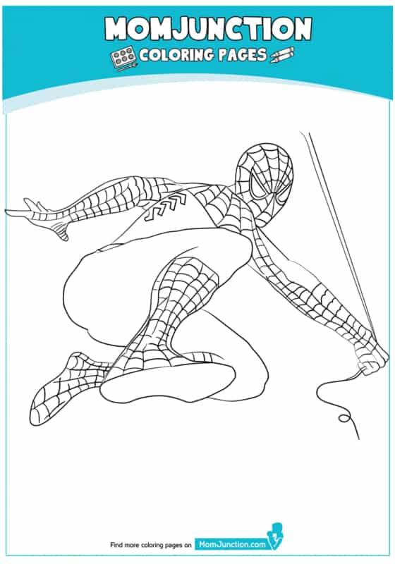 Homem Aranha em sua teia