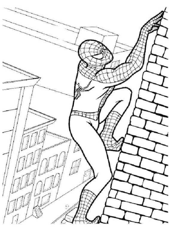 Homem Aranha escalando