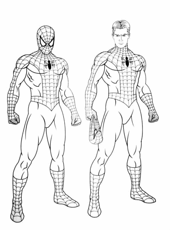 Homem Aranha revelado