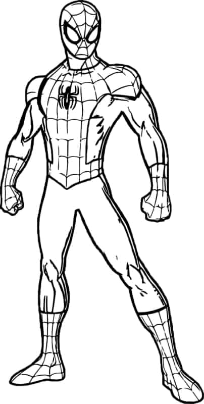 Spiderman para colorir