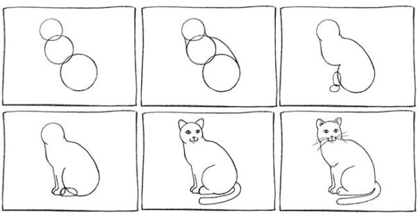 passo a passo de como desenhar um gato