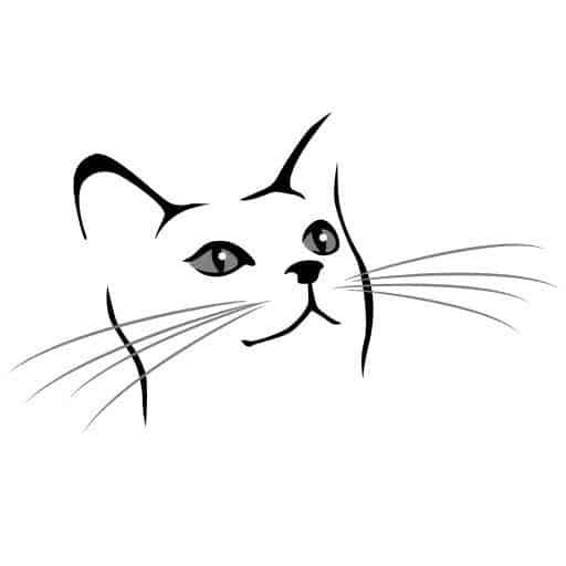 como desenhar face de gato