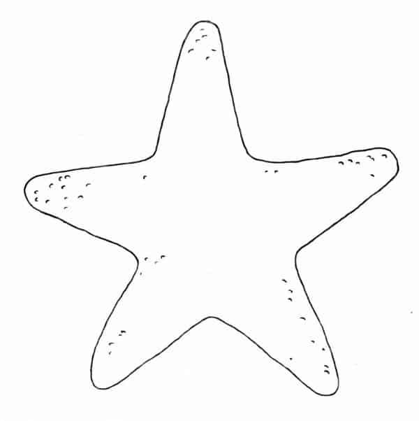 estrela do mar simples para pintar