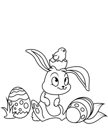 ovo coelho e passaro para colorir