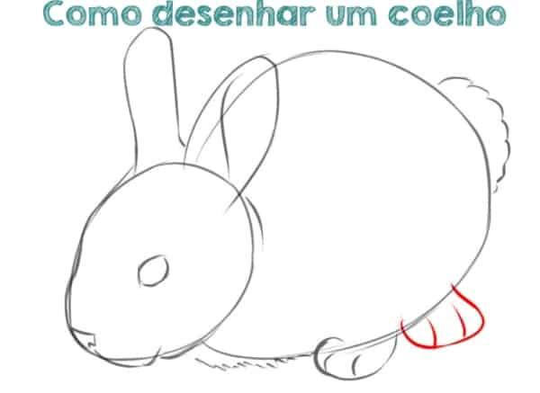 dicas e tutoriais de como desenhar um coelho