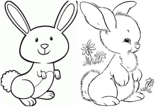 como desenhar coelho