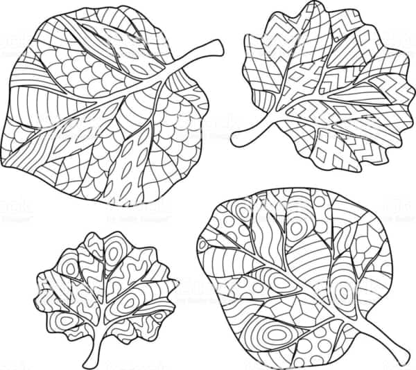 Folhas de árvores para colorir 6