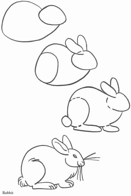 Desenhos fáceis coelho