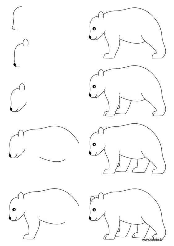 Desenhos fáceis urso