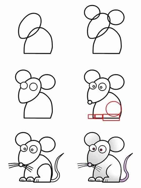 passo a passo simples para desenhar um rato