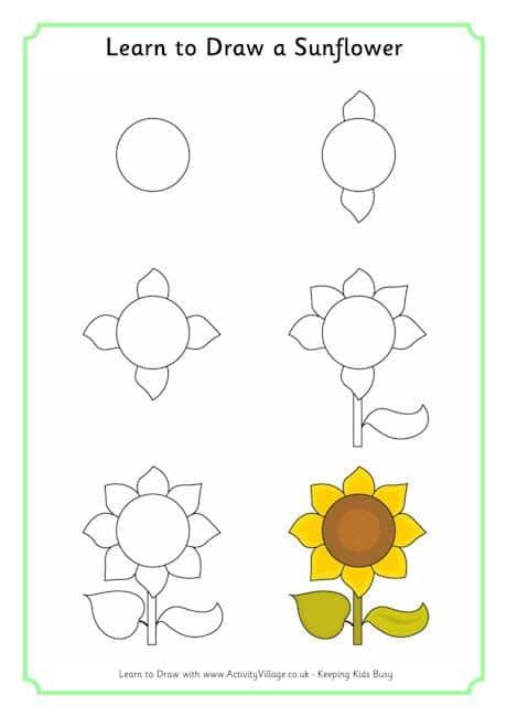 Como desenhar girassol passo a passo dois