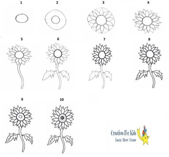 Como desenhar girassol passo a passo um