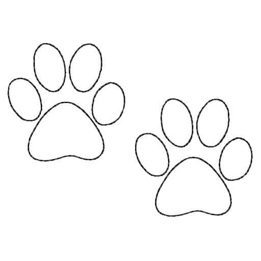 Como desenhar patinhas de cachorro