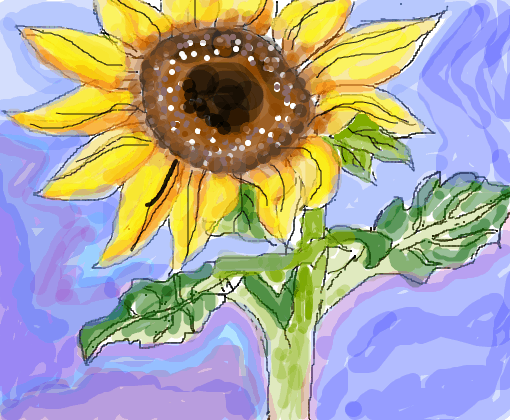 Desenho de girassol colorido