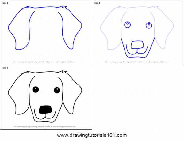 Maneira simples e rápida de desenhar um cachorro