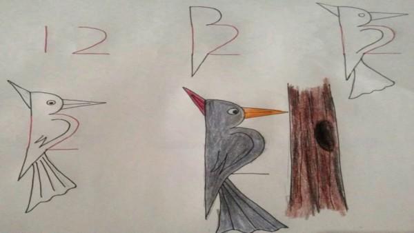 Como desenhar animais com números pica pau