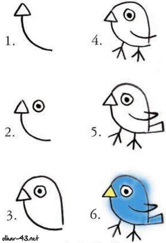 Como desenhar animais passaro