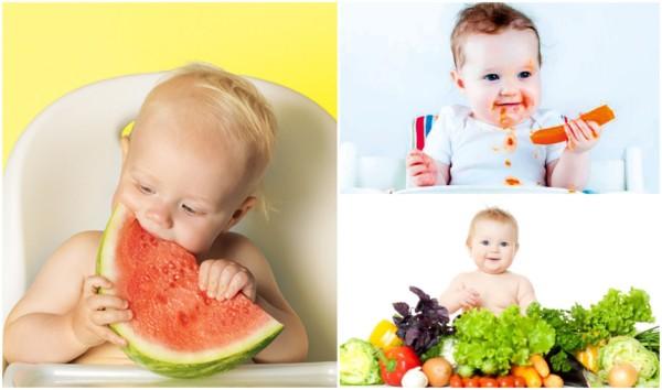introducao alimentar 2