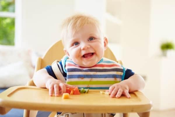 introducao alimentar dos bebes como fazer