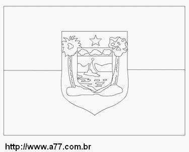bandeira do Estado do Rio Grande do Norte para colorir