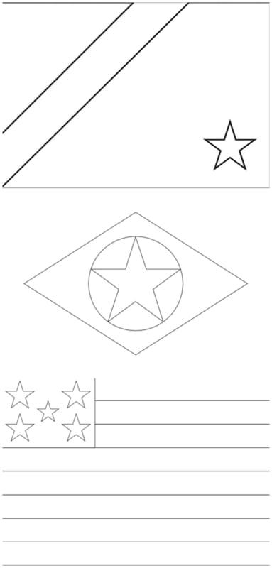 bandeiras dos Estados do Centro Oeste para colorir