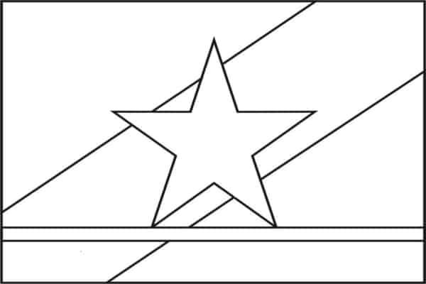 bandeira de Roraima para pintar