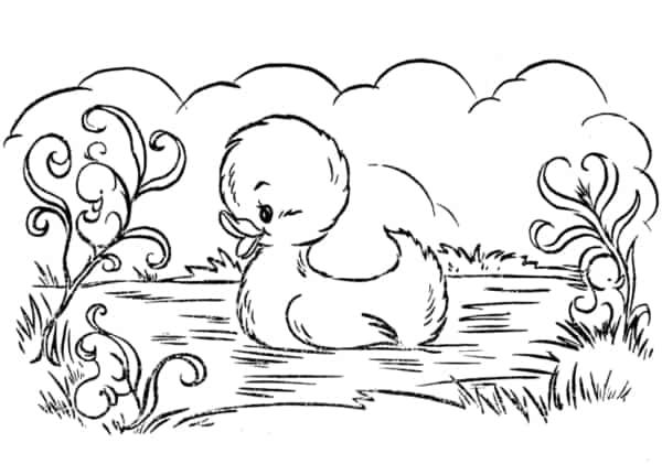 desenho de patinho na lagoa