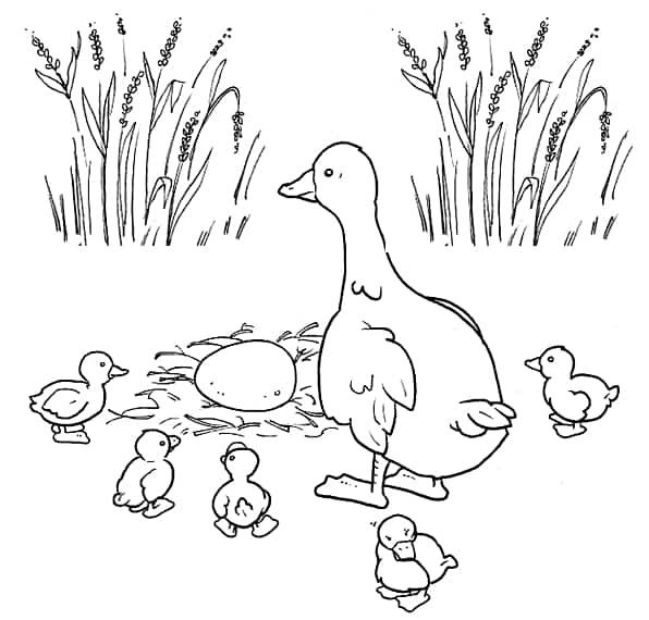 desenho de familia pato para colorir