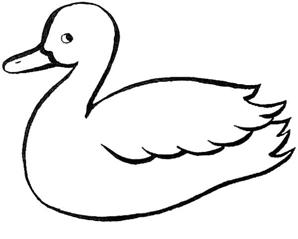 desenho de pato simples para imprimir