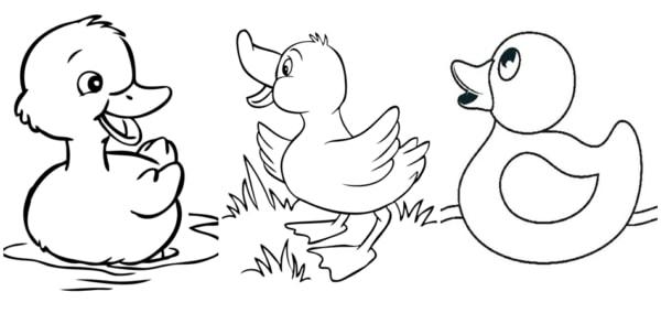 desenhos simples de pato para colorir